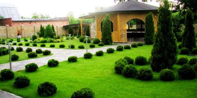 ландшафтный дизайн загородного дома фото 3